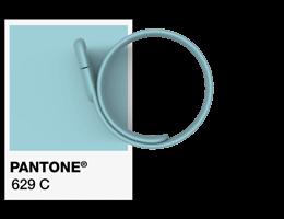 Referências de Pantone® Pulseira USB